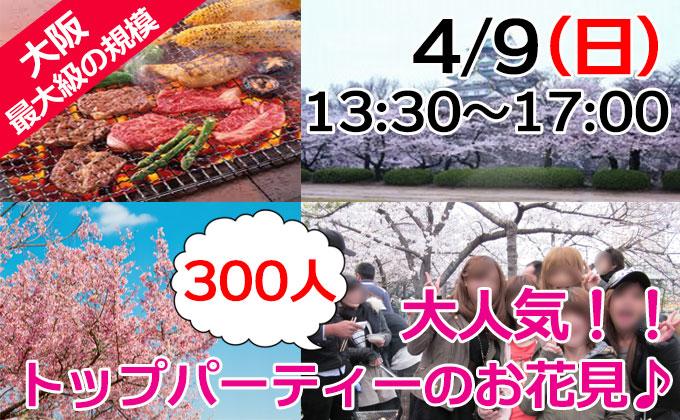 大阪 お花見 街コン